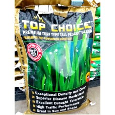 Grass Seed - Assorted Sizes