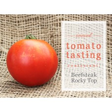 Tomato - Multiple Varieties and Sizes