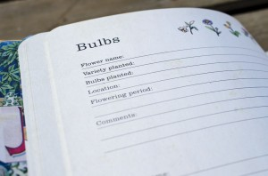 Bulbs Entry Page