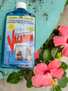 3 Easy Ways to Water Your Plants While You're Away - Strange's ... Watering Potted Plants On Vacation on self watering plants on vacation, water while on vacation, watering plants while on vacation, watering house plants on vacation, watering spikes for plastic bottles,