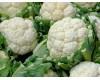 Cauliflower - 4 pack