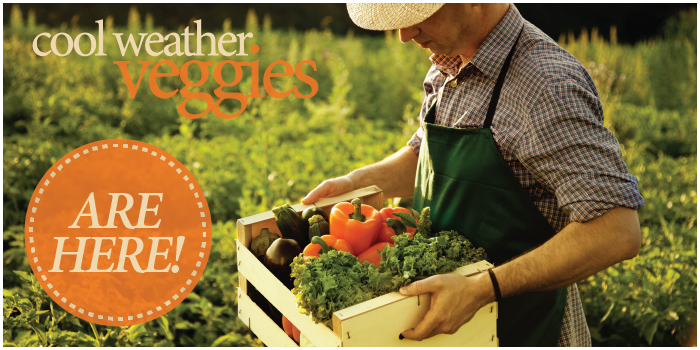 cool weather veggies are here