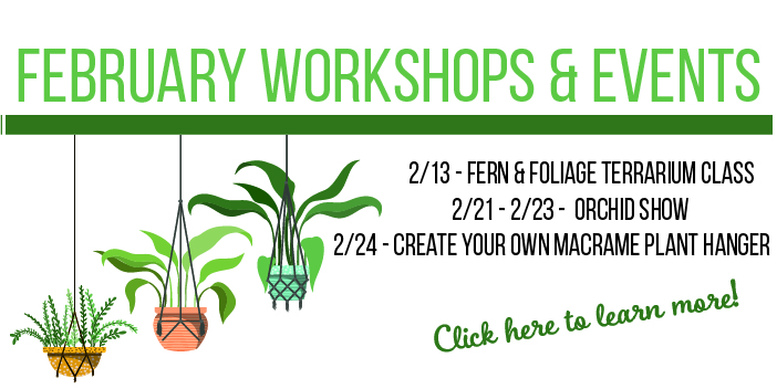 February 2020 workshops and events