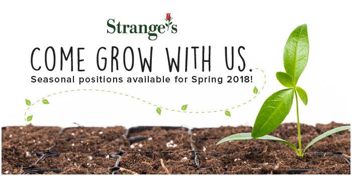 Spring2018Recruitment