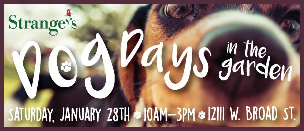 jan-2017-ss-dog-days